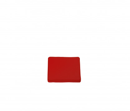 Seat cushion - Red